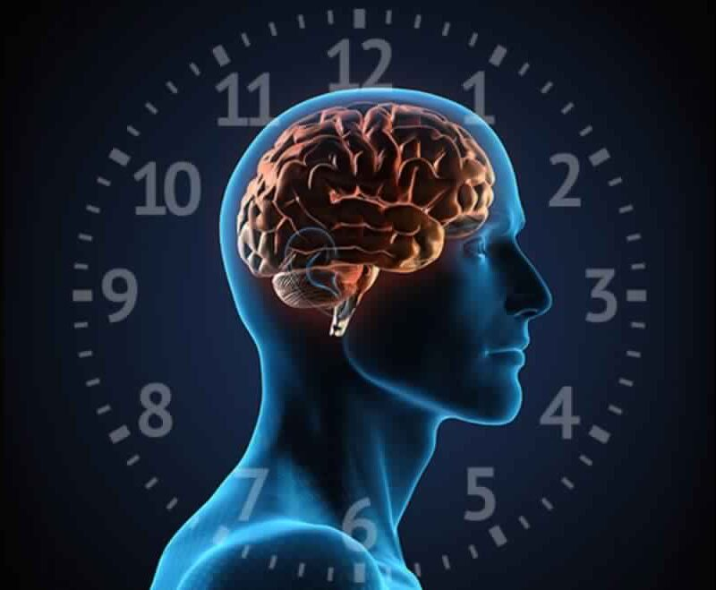 Circadian Rhythm Sleep Wake Disorders
